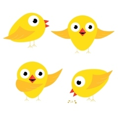Happy yellow chicken singing bow and eat vector image