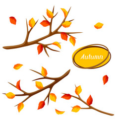 autumn set with branches of tree and yellow leaves vector image vector image