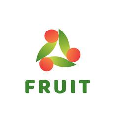 creative abstract fruit logo vector image vector image