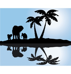 palm and elephants reflection vector image