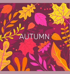 autumn banner full colorful leaves vector image