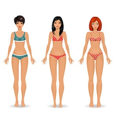collection Female body template front vector image