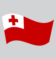 flag of tonga waving on gray background vector image