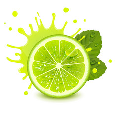 Fresh lime with mint leaves and a splash juice vector