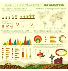 Infographic template for agriculture vegetables vector image