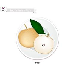 Korean Pear A Popular Fruits in South Korea vector