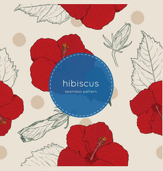 set of chinese hibiscus hand draw seamless pattern vector image vector image