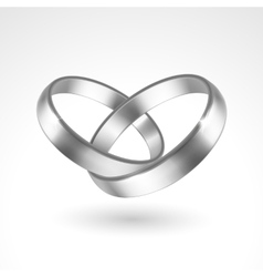Silver Rings vector image