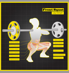 antagonistic muscle exercises and workouts vector image