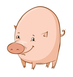 cartoon piglet vector image