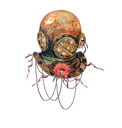 Diving helmet and poppy vector