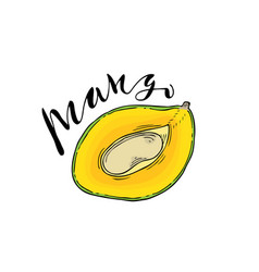 the cut fruit of mango on a white background with vector image vector image