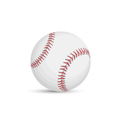 baseball ball isolated on white background vector image