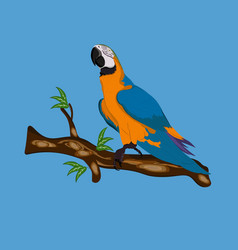 Bird blue-and-yellow macaw standing on branches vector