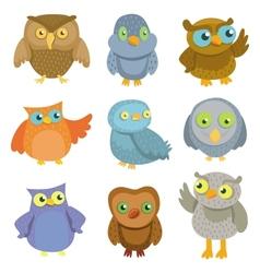 collection cartoon owls vector image