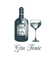 Hand sketched gin bottle and glassalcoholic drink vector