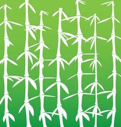 japanese bamboo background vector image