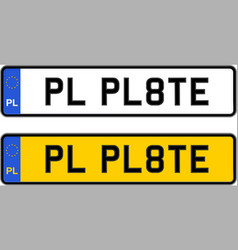poland number plate vector image