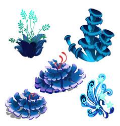 Set of colorful marine cartoon algae and coral vector