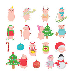 set of happy and funny pigs on white background vector image