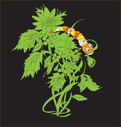 Caterpillar on a Plant vector image vector image