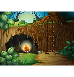 A camp fire in cave vector