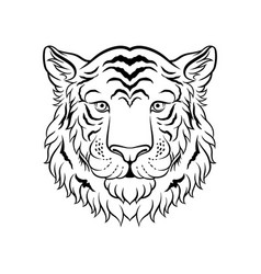 Black and white sketch of tigers head face of vector