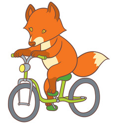 cute cartoon fox riding a bicycle vector image