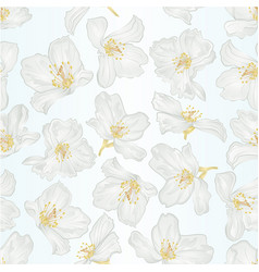 seamless texture jasmine flowers with twigs vector image