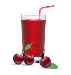 Set of cherry juice and fresh ripe berries vector