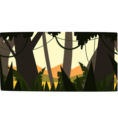 Sunrise in tropical jungle greenwood background vector