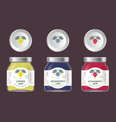 Three packaging cherry pear orange jam vector