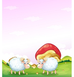 Two sheeps at the hill with mushrooms vector