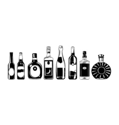 Alcohol bottles set design elements isolated on vector image