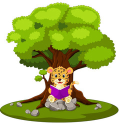 leopard reading book and sitting on the stone vector image vector image