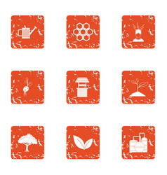 Bee plantation icons set grunge style vector