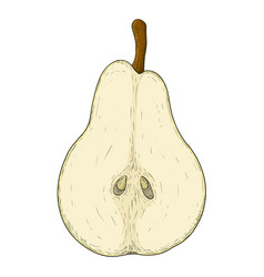 half of pear colored hand drawn sketch vector image