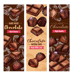 handmade chocolate candies and sweets vector image