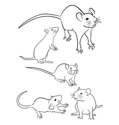 mice line art 03 vector image
