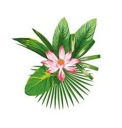 Tropical bouquet flowers leaves vector