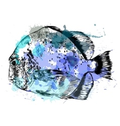 Watercolor sketch of hand drawn fish vector image