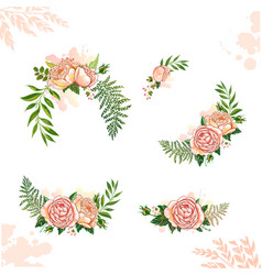 floral collection rose vector image vector image