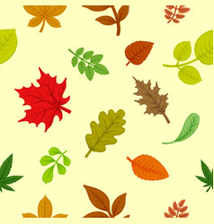 background of colorful autumn leaves vector image