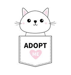 Cute cat sitting in pocket adopt me pink vector
