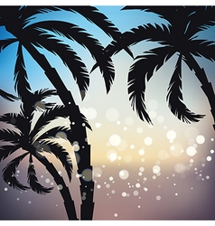 Palms sunset background vector