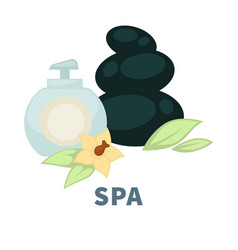 spa wellness massage stones and essential oil vector image
