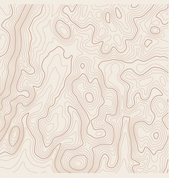 Topographic map background vector