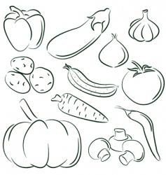 vegetable doodles vector image