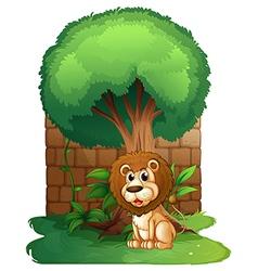 A lion under a big old tree vector image vector image