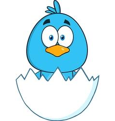 Baby Chick Cartoon vector